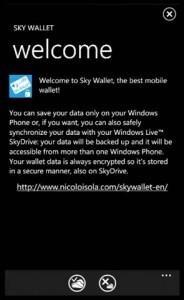 Sky Wallet - приветствие