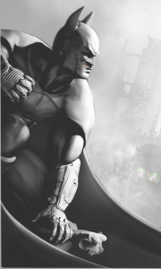 Batman Arkham City 3