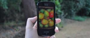 Обновление Windows Phone Mango доступно для всех смартфонов