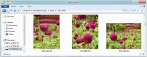 Изображение в Проводнике на Windows 7: Те же цветы, но ориентация всех фото верная