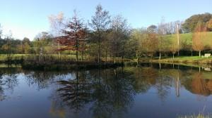 пейзаж сфотографированный HTC 8X