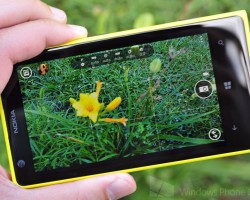 Nokia Lumia 1020 и пчёлы