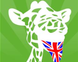 gTongue Diсtionary — многоязычный оффлайн словарь для Windows Phone