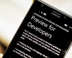 На Windows Phone 8.1.1 Developer Preview начало приходить обновление 14219
