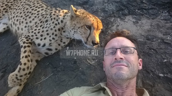 Stephen-Alvarez-and-cheetah