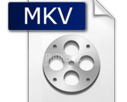 В Windows Phone 8.1 добавлена поддержка формата MKV