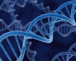 Microsoft разработала сверхэффективную «ДНК-память»