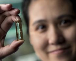 Ученые случайно создали аккумулятор со временем работы до 400 лет