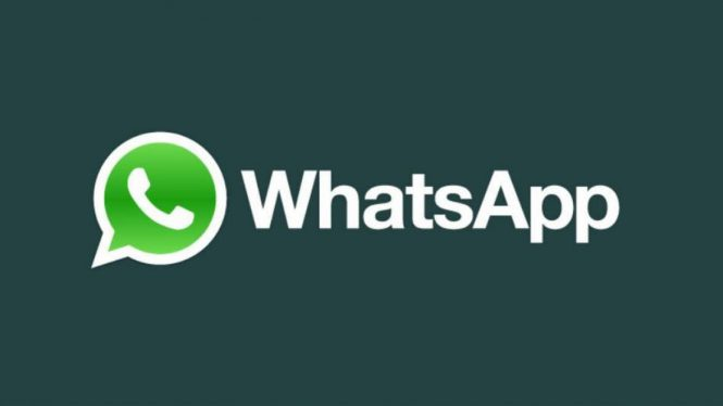 Логотип WhatsApp
