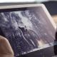 Adobe готовит фоторедактор сголосовым ассистентом