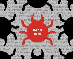 Начался февральский Bug Bash