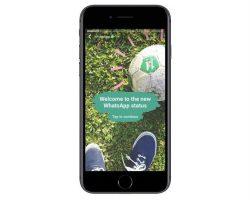 ВWhatsApp появятся «Статусы»— аналог «Историй» вSnapchat, Facebook Messenger, Instagram иВКонтакте
