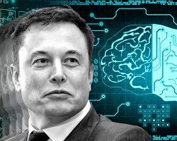 Илон Маск надеется за 8-10 лет создать полноценные нейроинтерфейсы для связи мозга с компьютером