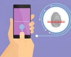Сборка 15245 сломала сканеры отпечатка пальца на некоторых смартфонах