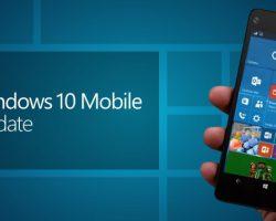 На этой неделе Microsoft начинаетраспространять Fall Creators Update для Windows 10 Mobile