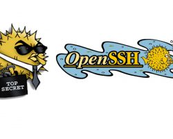 Компания Microsoft добавила в Windows 10 нативный OpenSSH-клиент