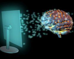Microsoft работает над «интерфейсом человеческого мозга»