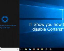 Microsoft хочет разъединить Cortana и поиск в Windows 19H1