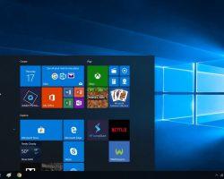 В Windows 10 May 2020 Update нашли очередную проблему