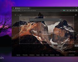 Microsoft тестирует функцию Web Capture в браузере Edge