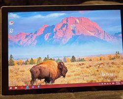 В Сеть утекли новые фотографии Surface Pro 8