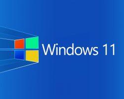 Windows 11 могут анонсировать на следующей конференции Microsoft
